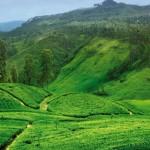 Sri Lanka 3a